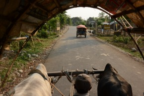 Video Diary: Chitwan, Nepal – Day 1
