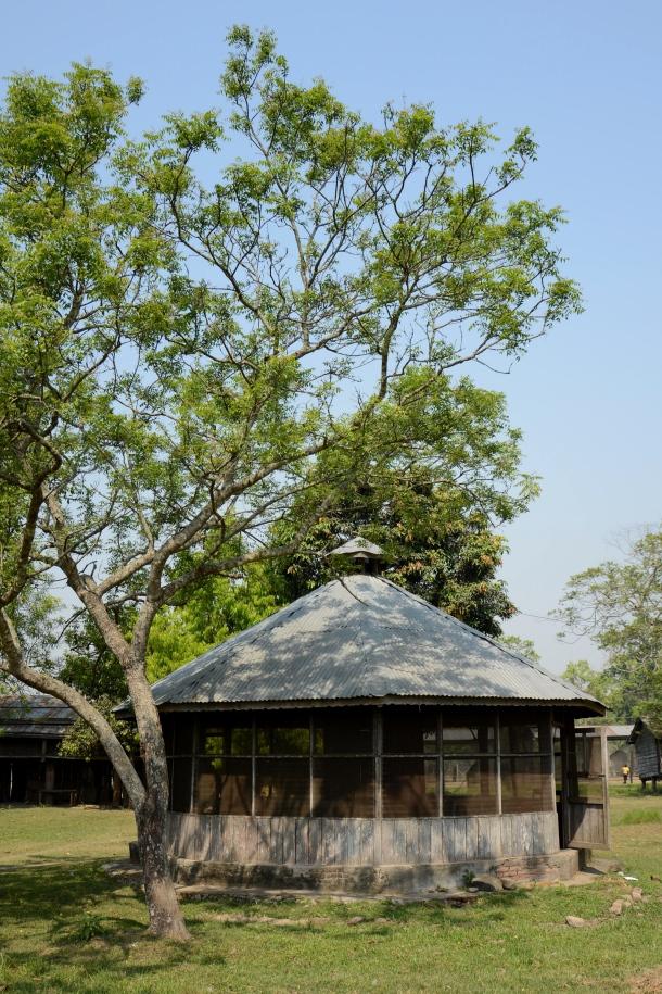 z casinha at elephant breeding centre